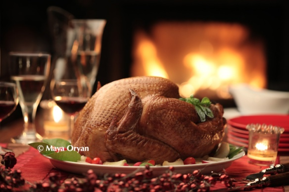 Christmas Turkey - MayaOryan